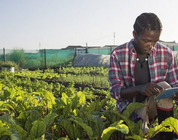 digitalisation-de-l'agriculture